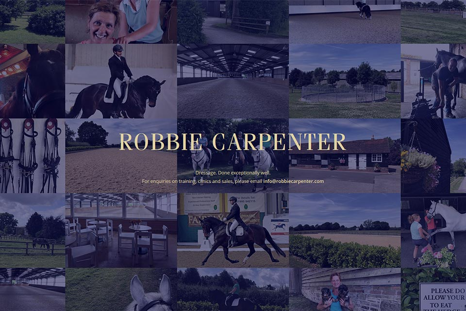 Robbie Carpenter website