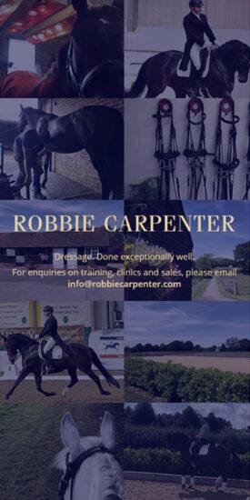 Robbie Carpenter website - mobile version